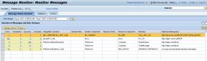 Monitoring  SAP PI/PO Training