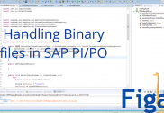 Thought for what is happening with SAP PI/PO